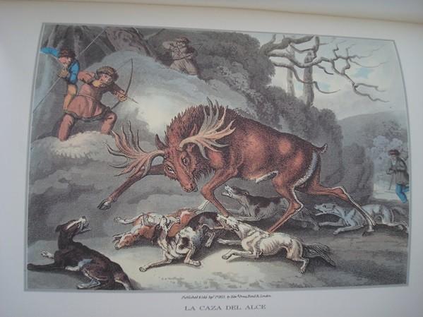 Anécdotas, Relatos y Escenas de Caza