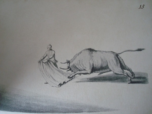 Combate de Toros en España (Combat de Taureaux en Espagne), Emmanuel Witz