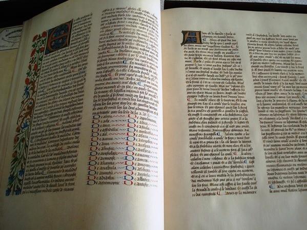Libro de los Medicamentos Simples, siglo XV