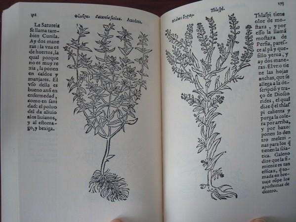 El Libro de las Yervas, de Juan de Jarava, 1557