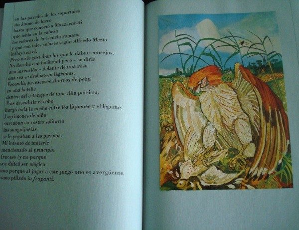 LIGABUE. Los Signos del Hombre. FMR, Franco Maria Ricci