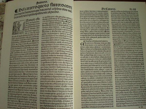 Libro de las cuatro enfermedades cortesanas, 1544