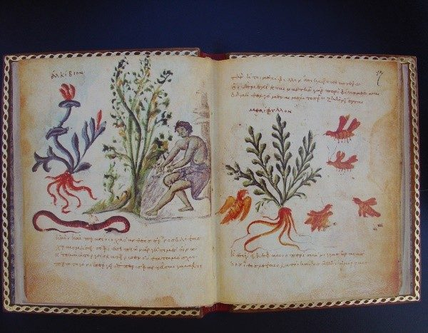 Theriaka y Alexipharmaka, de Nicandro, s. X