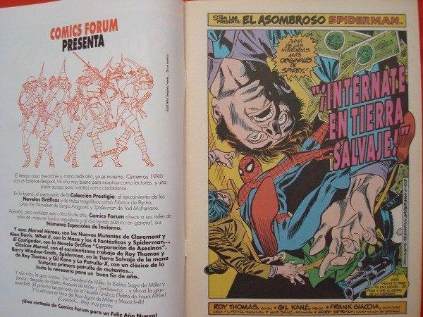 Spiderman, cómic especial invierno 1990