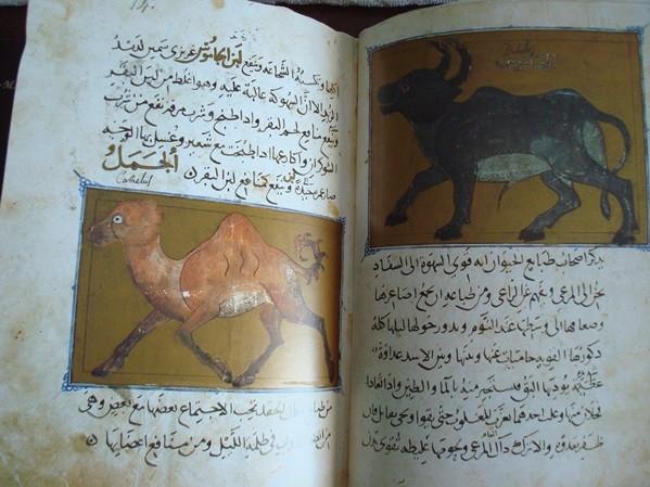 Libro de las utilidades de los animales, códice árabe, año 1354